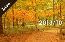 【ライブ情報】2013年10月