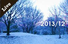 【ライブ情報】2013年12月