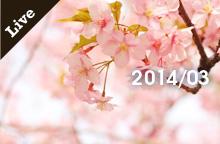 【ライブ情報】2014年3月