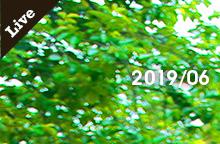 【ライブ情報】2019年 6月