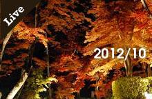 【ライブ情報】2012年10月