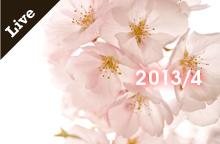 【ライブ情報】2013年4月