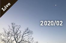【ライブ情報】2020年 2月